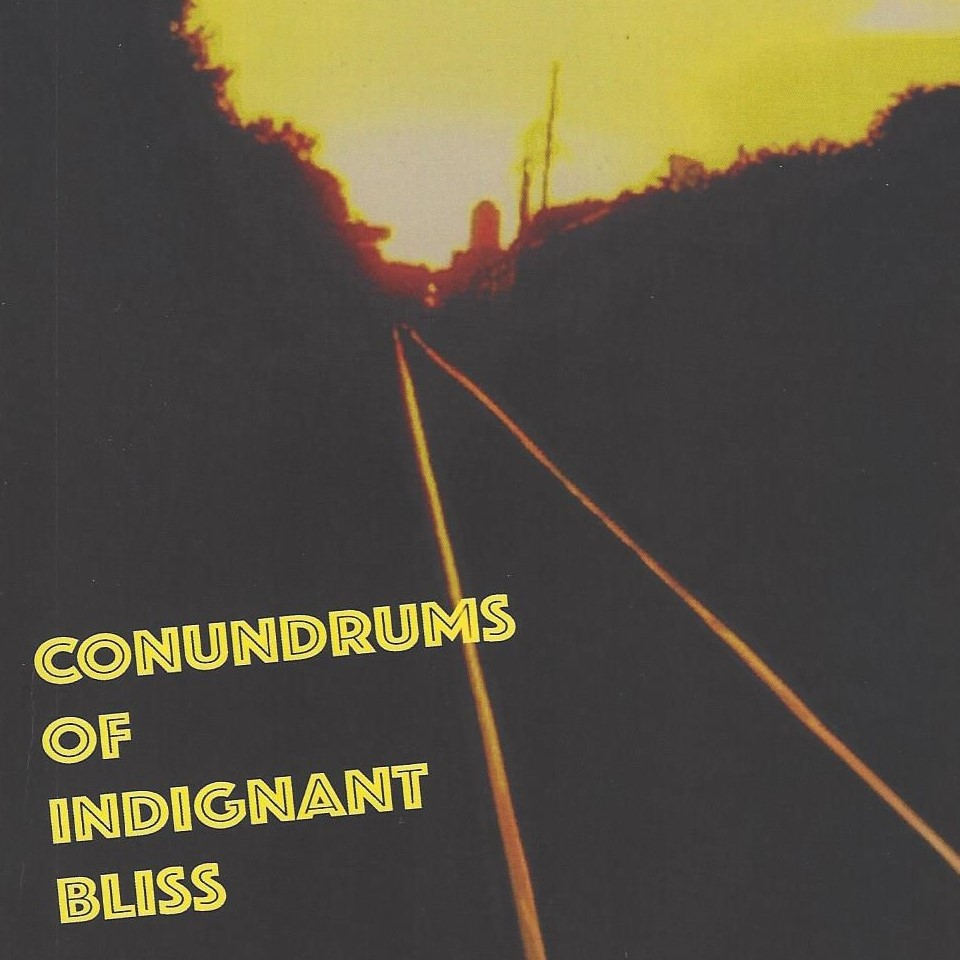 Conundrums of Indignant Bliss cover square 2